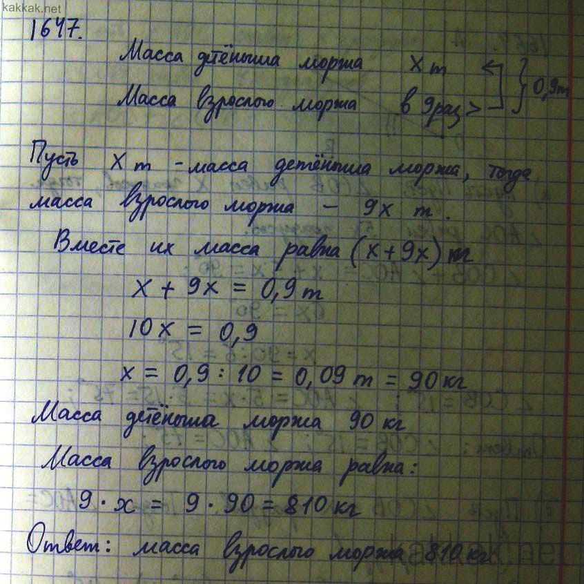 Математика решения задачи 5класса биология 11 класс генетика решение задач